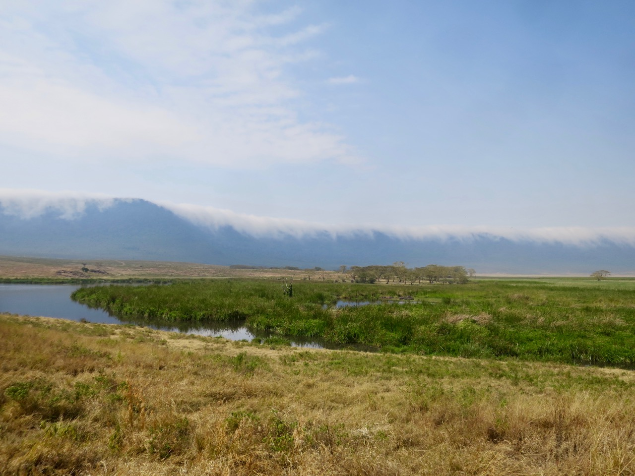 Ngorongoro 1 40