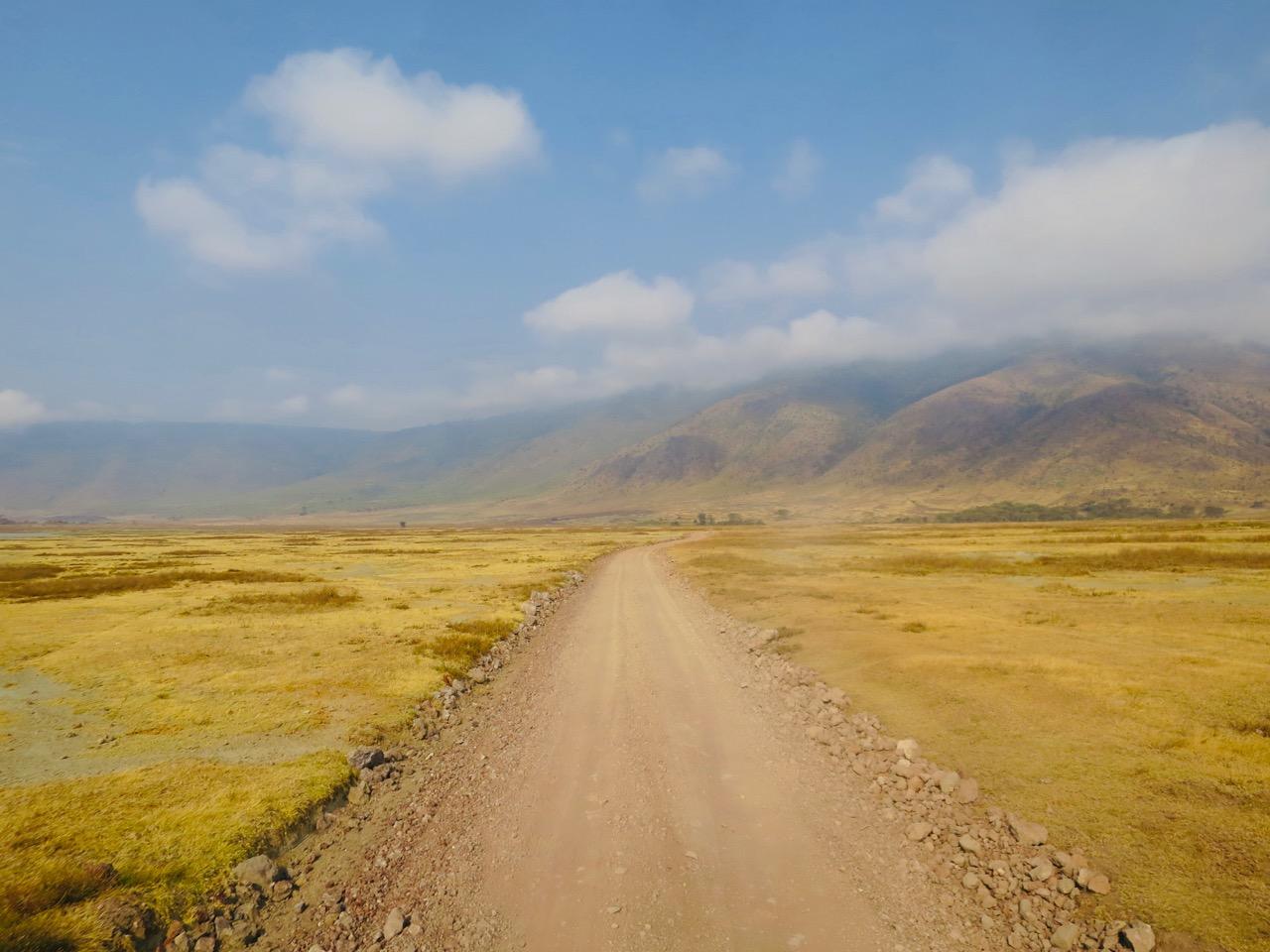 Ngorongoro 1 44