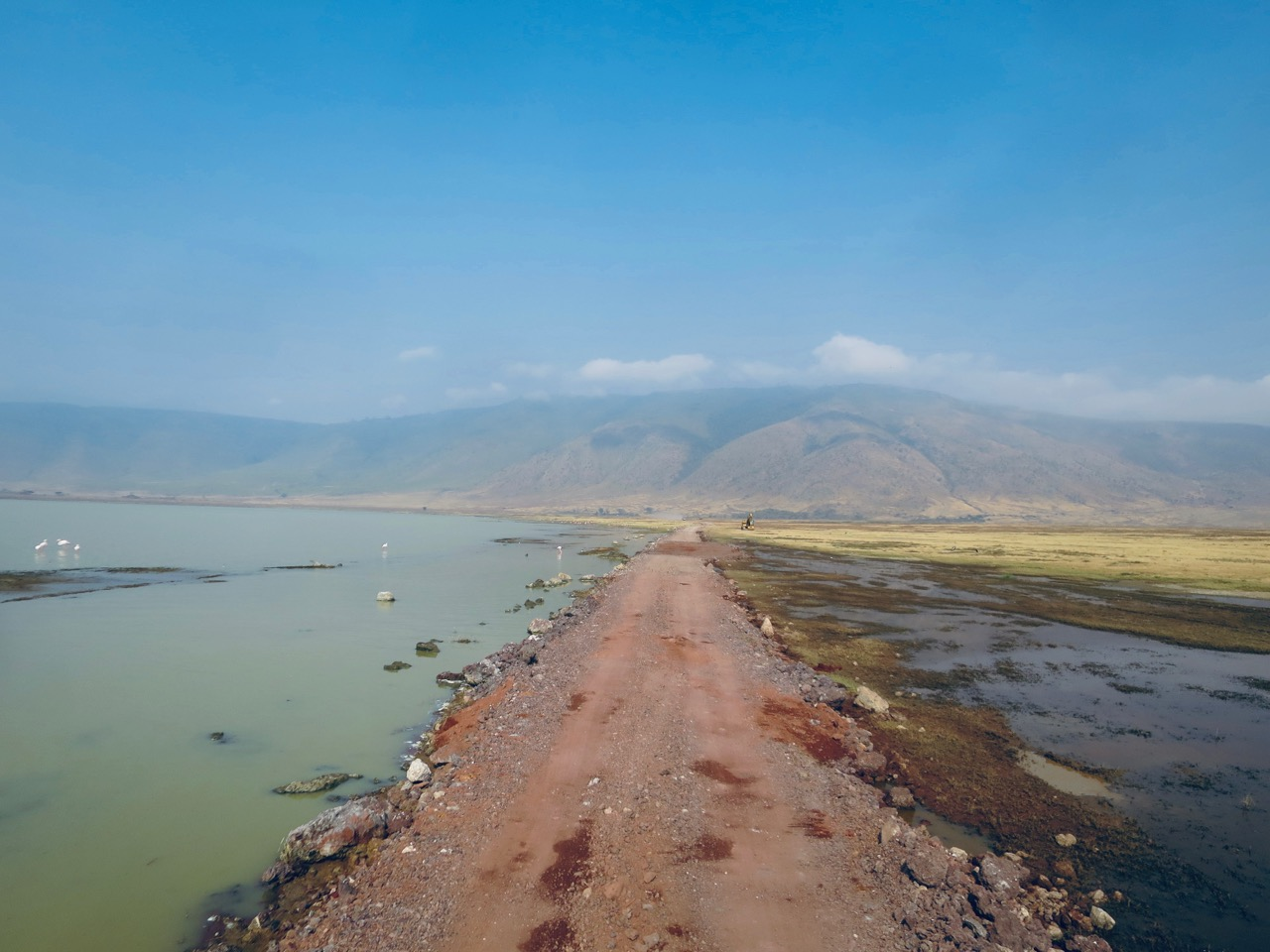 Ngorongoro 1 45