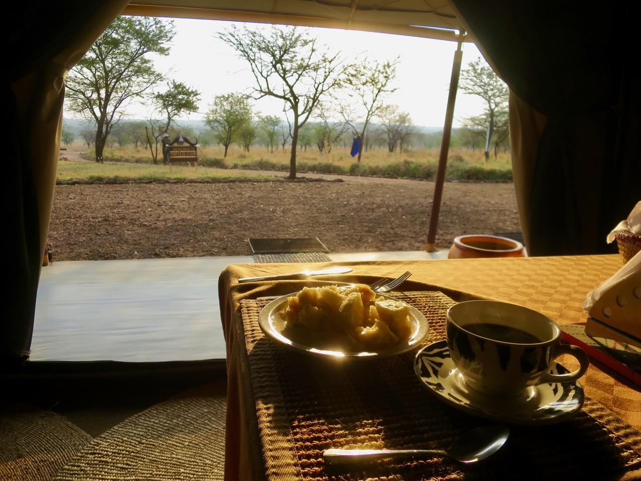 Serengeti 1 16