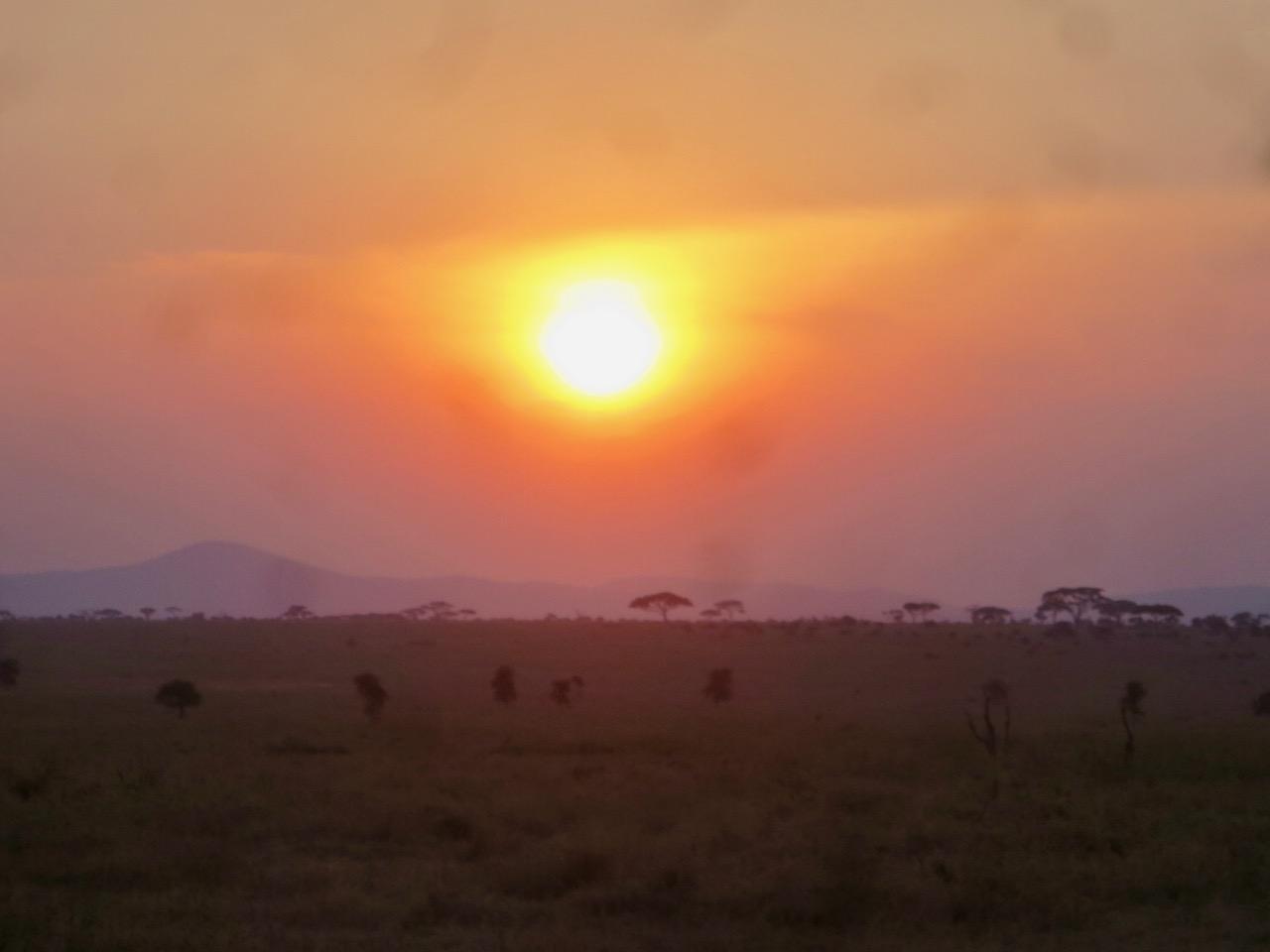 Serengeti 1 36