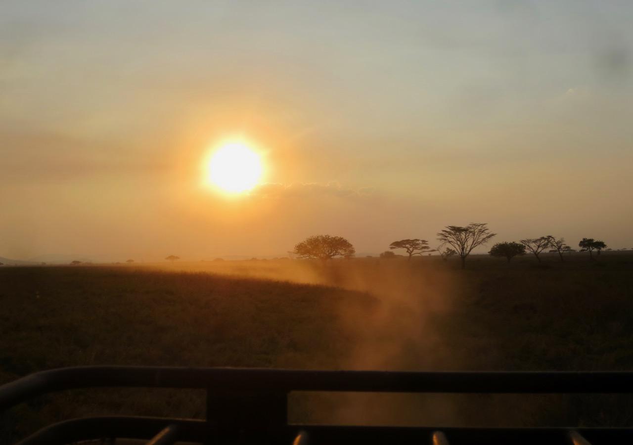 Serengeti 1 38