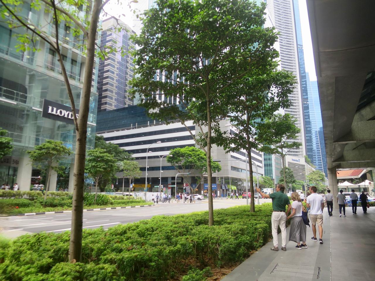 Singapura 5 02