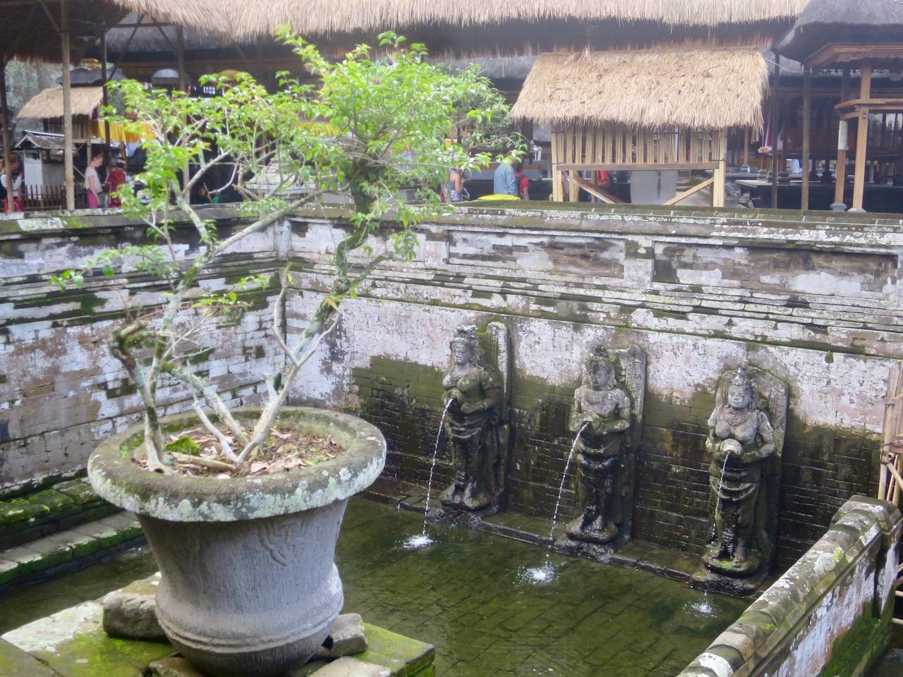 Bali 3 06