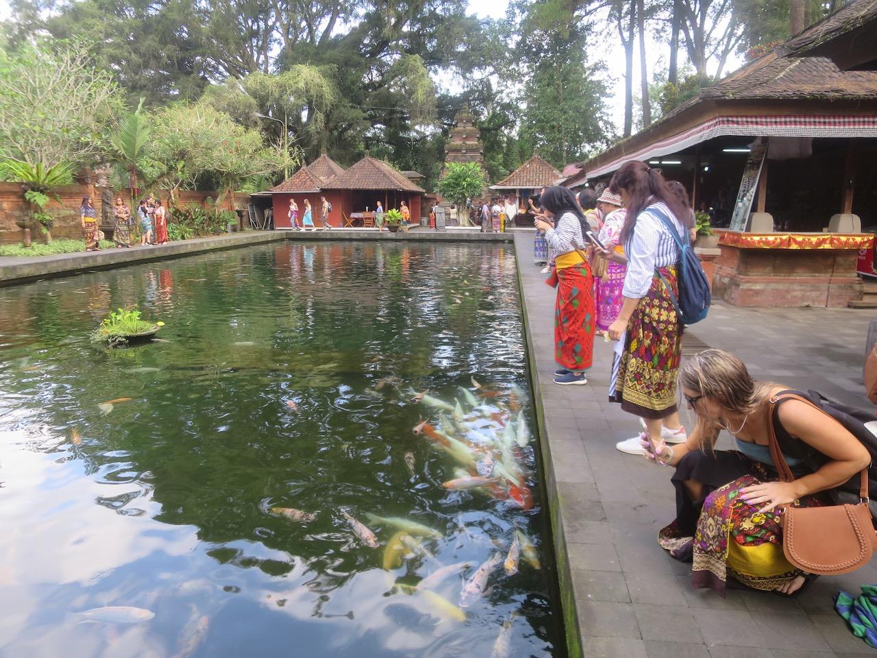 Bali 3 40