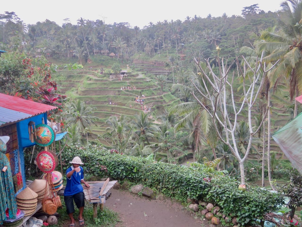 Bali 3 44